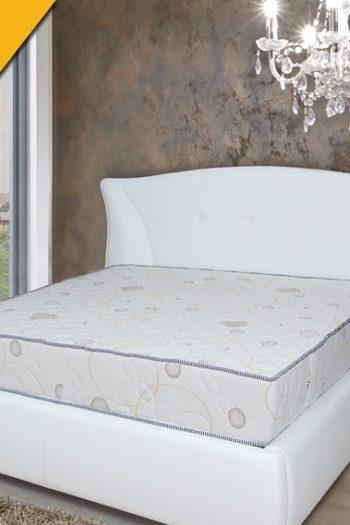 легло жасмин